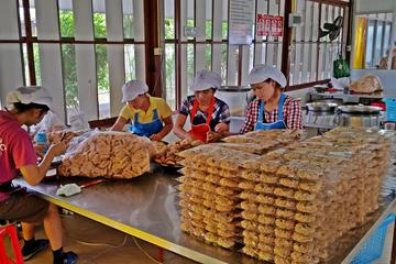 Private Full-Day Rustic Roads of Lampang from Chiang Mai