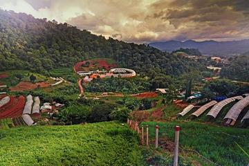 Private Half-Day Hmong Nong Hoi Village and Botanic Garden in Chiang ...