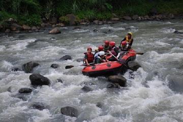 Private Raftingtour auf dem Fluss Progo und Borobudur-Tempelanlage