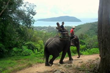Safári 4 em 1 em Phuket