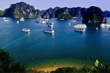 Crucero de un día por la bahía de Halong hasta la cueva Sung Sot y la...