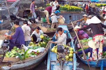 Excursion d'une journée au marché flottant de Cai Be et dans la ville...