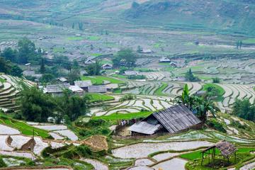 Excursión de 3 días de senderismo a Sapa desde Hanói