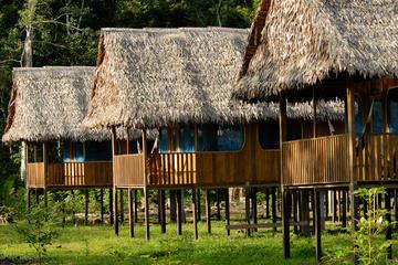 Excursión de observación de fauna y flora amazónica de 3 días en la...