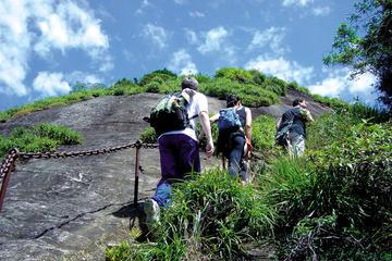 Caminata hasta el pico de Tijuca en...