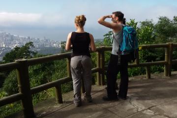 Randonnée au pic de Tijuca à Rio de...