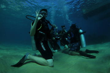 Discover Scuba Diving Including Sightseeing Boat Tour