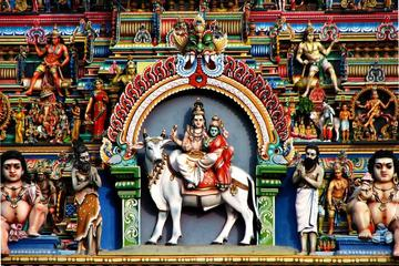 Chennai Shore Excursion - Full Day...