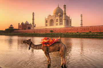 Private Tour: Full-Day Agra and Jaipur Tour from Delhi