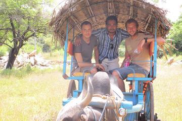 Grande excursion de 9nuits au Sri Lanka