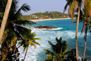 Private 8-Day Tour of Sri Lanka from ...
