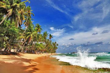 Private Tour durch Sri Lanka mit 7 Übernachtungen