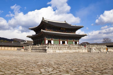 Private Tour of Seoul: History and...