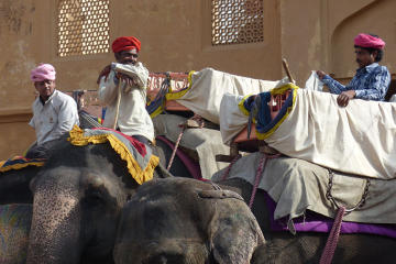 Jaipur Sightseeing Private Day Tour