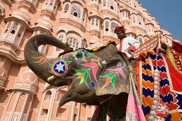 Private Jaipur Sightseeing Tour with Entrance Fees and Elephant Ride