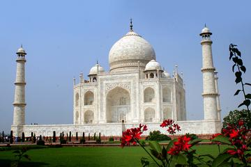 Private 5-Night Delhi, Jaipur, Ranthambore, and Agra Tour with Taj Mahal