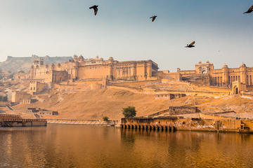Private Tour : 4 Days Jaipur ,Ranthambore Tigers & Agra Taj Mahal Tour