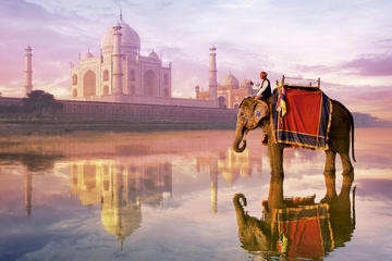 Viator Exclusive: Taj Mahal, Agra Fort, & Abhaneri Step Well's Tour From Jaipur