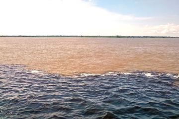 Excursão no encontro das águas e pelo...