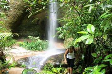 Presidente Figueiredo: Day Tour from Manaus
