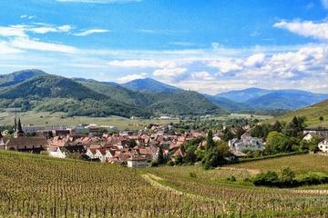 Alsace Villages and Wine Day Trip from Strasbourg