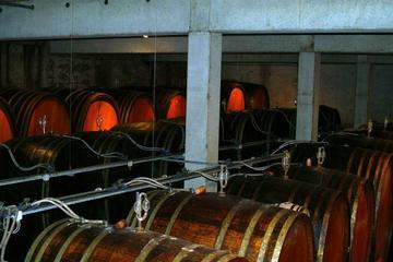 Entdeckung der Weine des Elsass an einem Tag ab Straßburg