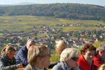 Excursion d'une journée dans les villages d'Alsace avec dégustation...