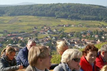 Private Tour: Alsace Villages and Wine Day Trip from Gerardmer