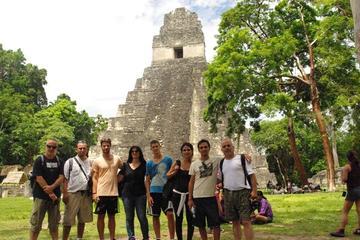 Gita giornaliera a Tikal con zipline facoltativa tra gli alberi da