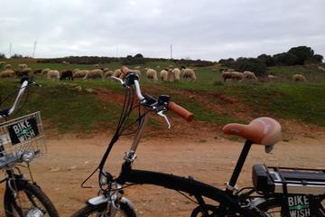 Excursão de bicicleta no Parque ambiental saindo de Vilamoura