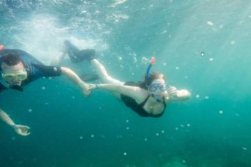 Pula Snorkeling and Kayak Tour