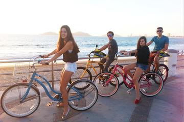 Discover Mazatlan on Wheels with a...