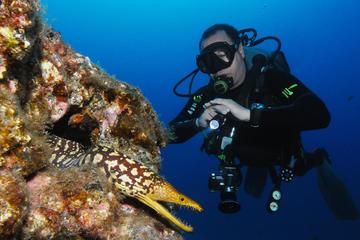 Varias inmersiones de submarinismo en...