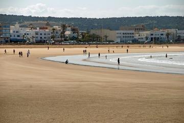 Excursion d'une journée à Essaouira...