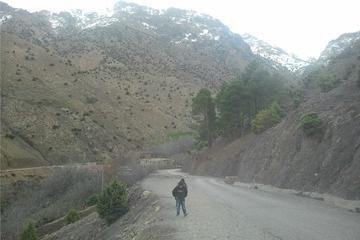 Viagem diurna ao Vale do Ourika saindo de Marraquesh