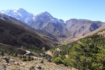 Three Valleys Day Trip from Marrakech with Lunch