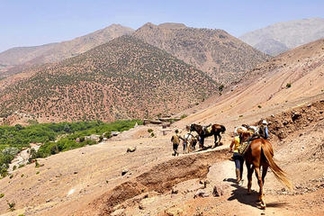 Half-Day Horse Riding Tour in Atlas...