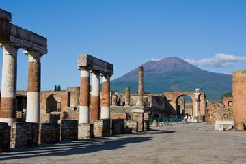 Excursion d'une journée privée Pompéi et d'Herculanum