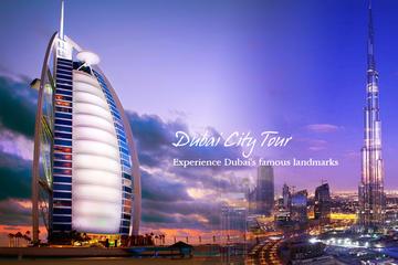 Excursión de medio día en la ciudad de Dubái