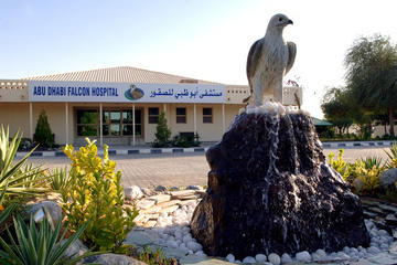 Falcon Hospital Tour Abu Dhabi
