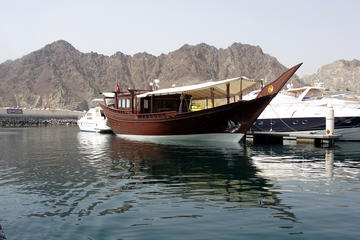 Half-Day Dolphin Cruise from Muscat