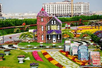 Half-Day Dubai Butterfly Garden and Miracle Garden Tour
