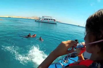 Snorkeling Trip In Tiran Island By Boat