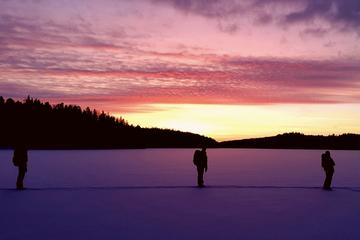 Snowshoe Winter Hike from Stockholm