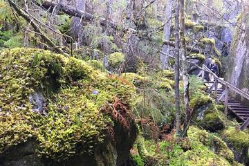 Orinoro Gorge and Finnish Wilderness...