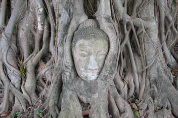 Tour di Bang Pa-In e Parco storico di Ayutthaya da Bangkok - Pullman