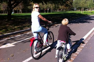 Kids Friendly Bike Tour in Milan from...