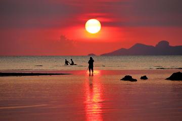 サムイ島の写真撮影ツアー