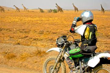 Visite de 7jours en moto au départ du Kilimandjaro