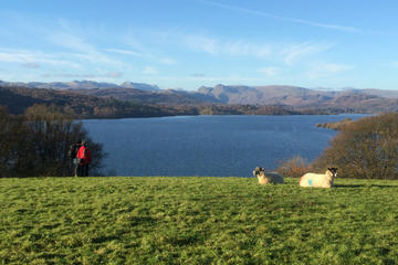 Private Tour: Lake District of...